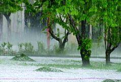 ورود سامانه بارشی به کشور/ بارشهای شدید در استانهای غربی