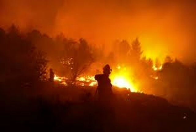 القاعده مسئولیت آتش علیه اسرائیل را پذیرفت