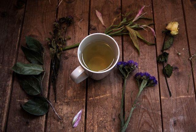 آیا واقعا استفاده از «تریاک» در یک داروی گیاهی کرونا صحت دارد؟