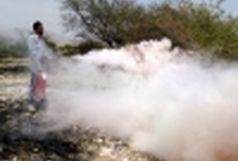 اطفاء حریق در منطقه گنو  بندرعباس
