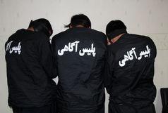 هفت متهم مرتبط با جرائم میراث فرهنگی در کرمان دستگیر شدند