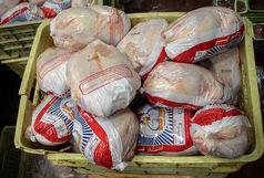 بیش از یک تن مرغ قاچاق در پارسیان به مقصد نرسید