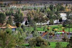 اتمام هرس زمستانه  ۳۵۰۰۰ اصله درخت در منطقه ۴