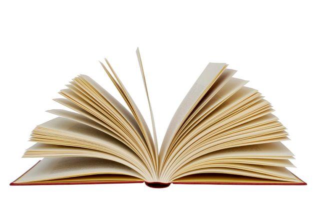 کتاب «سیر تا احمق» در نوبت مجوز نشر
