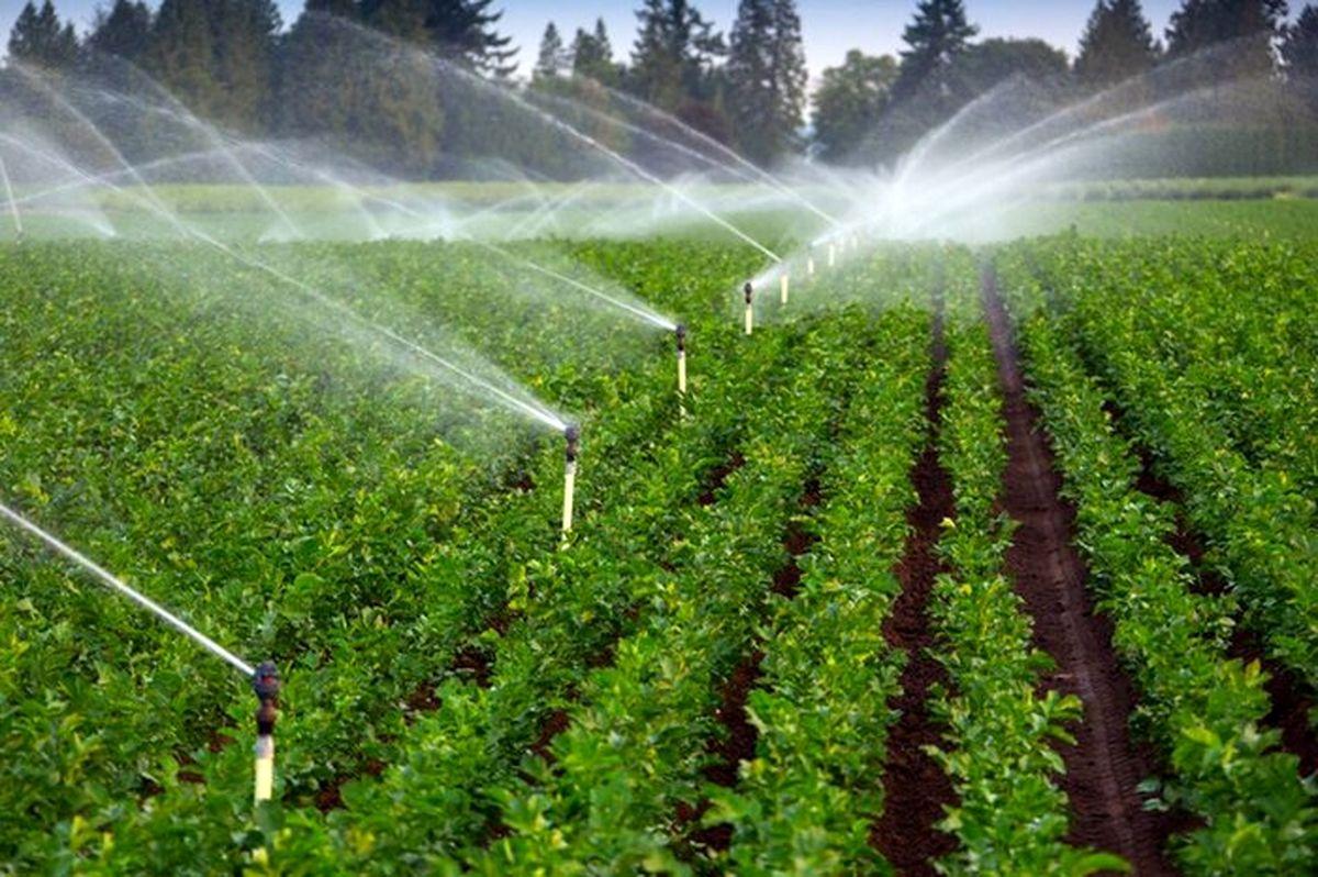 تخصیص ۱۳ میلیارد تومان اعتبار ویژه توسعه آبیاری نوین در ملایر
