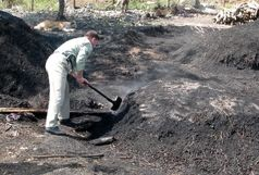 تخریب کوره تولید ذغال در روستای گوه کو