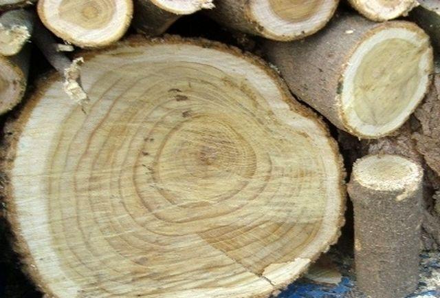 کشف 5 تن چوب قاچاق در سیاهکل