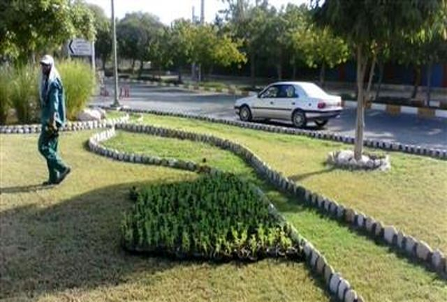 کاشت بیش از 2 میلیون گل فصلی در قم