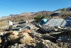  خسارت۲۰۰ میلیارد ریالی  زلزله به کشاورزی و دامپروری گیلانغرب