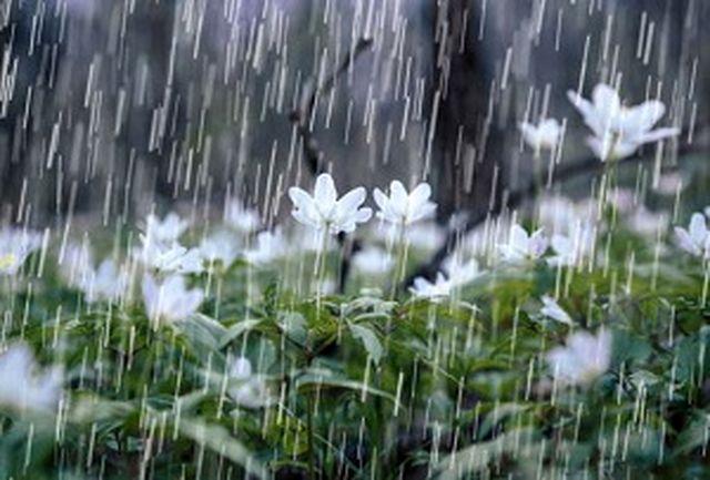 باران میهمان آسمان خراسان جنوبی