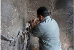 پلمب 3 واحد آلاینده و غیر مجاز در پاکدشت
