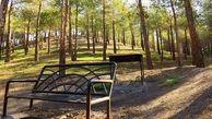 فردیس صاحب پارک جنگلی می شود