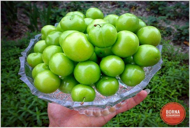 گوجه سبز نوبرانه قصرشیرین و سرپل ذهاب کیلویی ۱۰۰ هزار تومان