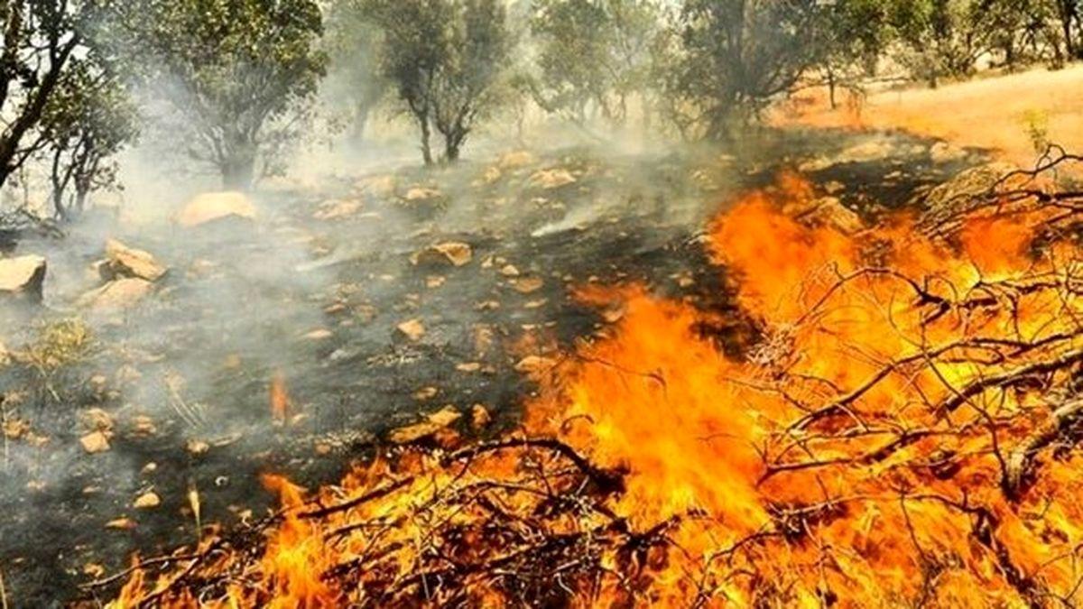 پیش بینی ریسک آتش سوزی زاگرس در هفته آینده