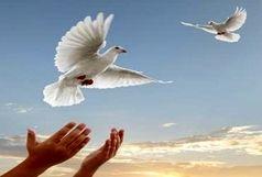 زوج جوان همدانی سه زندانی را آزاد کردند