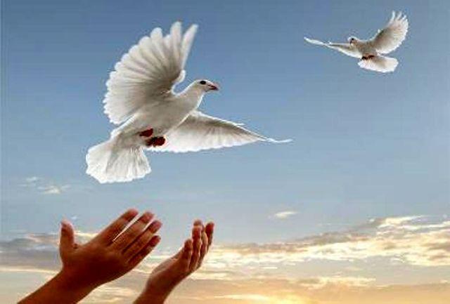 آزادی ۱۴ زندانی جرائم غیر عمد در ماکو
