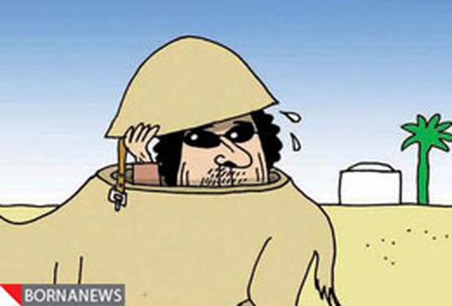 در جستجوی دیکتاتور فراری لیبی