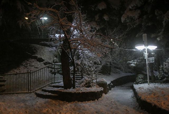 برف و کولاک در تعدادی از استانها / اعلام استانهای پر بارش