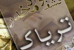 عامل قاچاق  3 کیلوگرم موادمخدر در البرز دستگیر شد