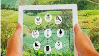 راه اندازی فاز نخست سیستم یکپارچه اطلاعات کشاورزی در خرداد امسال