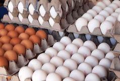 تخم مرغ گران نمی شود