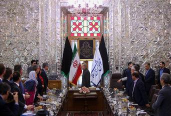 دیدار گروه دوستی پارلمانی ایران در مجلس ملی و سنای فرانسه با علی لاریجانی