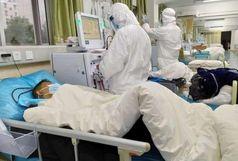 دارویی معجزه آسا برای نجات بیماران بدحال کرونایی