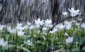 احتمال بارش باران در ایلام از اواخر امروز