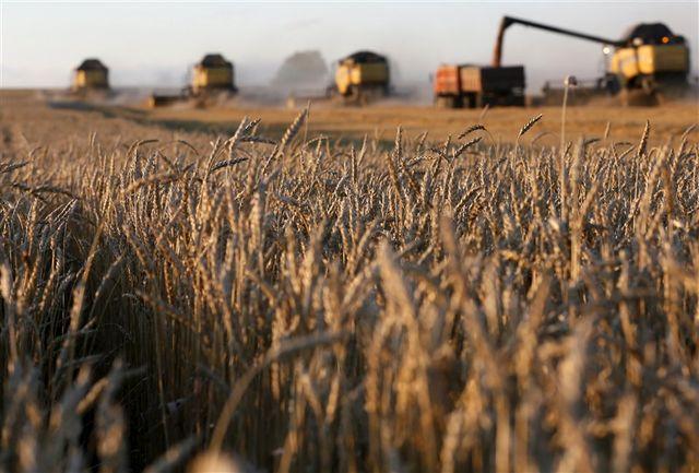 اگر می خواهیم خدمتی به مردم داشته باشیم، باید از کشاورزی معیشتی به سمت کشاورزی اقتصادی گام برداریم