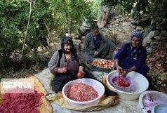 24 صندوق خرد زنان عشایر در آذربایجانغربی فعال است