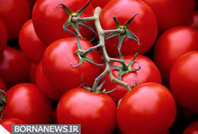 گوجه فرنگی و فلفل دلمه ای جذب آهن را افزایش میدهند