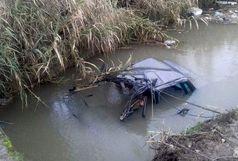 مرگ راننده خودرو  بعد از سقوط ناگهانی درخت