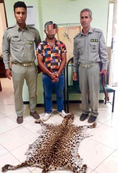 دستگیری شکارچی یک قلاده پلنگ