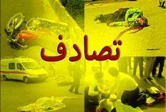 نخبه ایرانی به طرز فجیعی در گذشت
