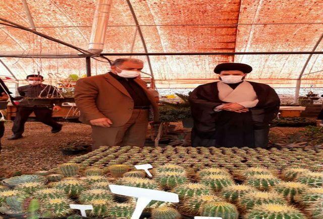 تحولی بزرگ در توسعه کشت گلخانه ای در پردیس