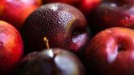 خواص میوه های تابستانی / آلو