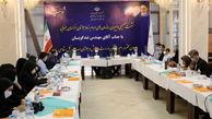 نشست سازمان های مردم نهاد خراسان جنوبی با معاون وزیر ورزش و حوانان