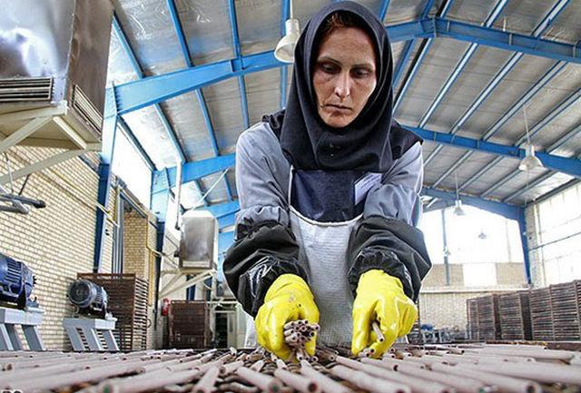 تسهیلات ویژه برای سلامت زنان توسط جهاددانشگاهی علوم پزشکی شهید بهشتی