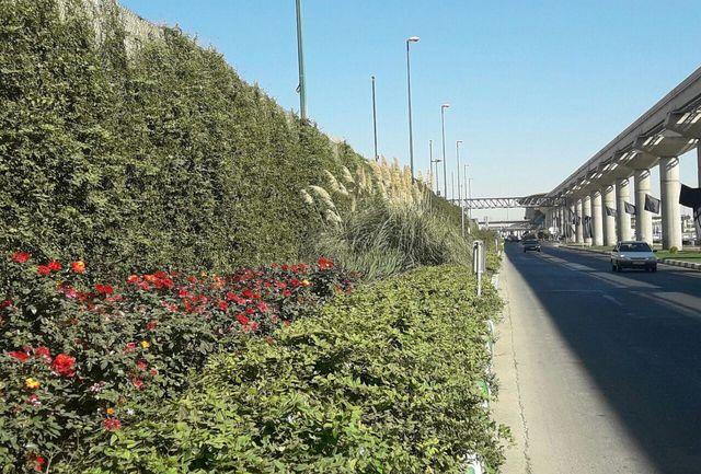 شهرداری تبریز برای پراکندگی فضاهای سبز ایده های موثری دارد