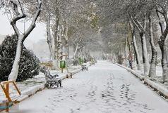 زنجان با سفیدی برف چهره زمستانی بخود گرفت