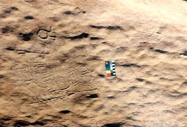 کشف نقوش صخره ای جدید در چگنی
