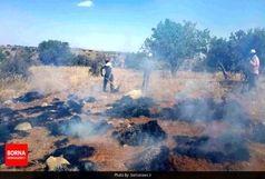 مهار آتشسوزی تنگه هایقر فیروزآباد