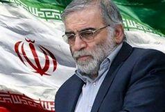 پیام تسلیت وزیر اقتصاد و دارایی در پی شهادت محسن فخری زاده
