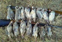 دستگیری متخلفان شکار و حمل غیر مجاز پرنده در اندیمشک