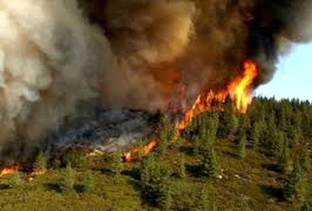 """آتش سوزی منابع طبیعی در""""کازرون"""""""