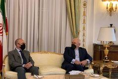ملاقات ظریف با رییس کمیسیون سیاست خارجی سنای ایتالیا