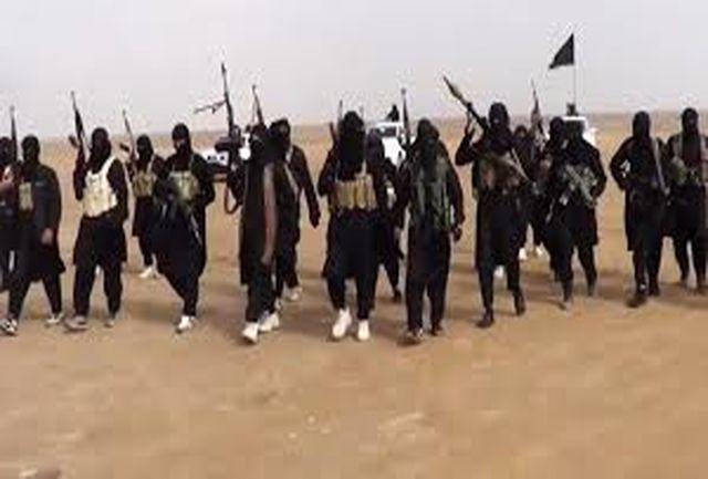 8500 داعشی در حملات هوایی ائتلاف کشته شدهاند