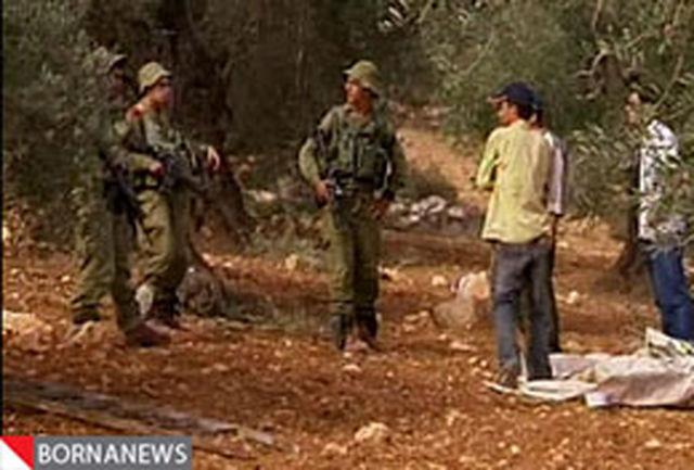 تخریب جنگلهای فلسطین توسط صهیونیست ها