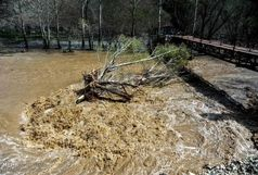 احتمال وقوع بارش شدید باران و سیلابی شدن رودخانه ها در استان