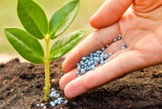 ۸۵ درصد کود مورد نیاز کشاورزان در داخل کشور تولید میشود